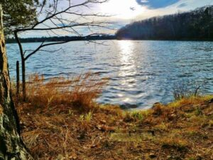 Three Lakes WI Real Estate Listings