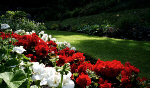 Improve Curb Appeal To Sell Your House Faster